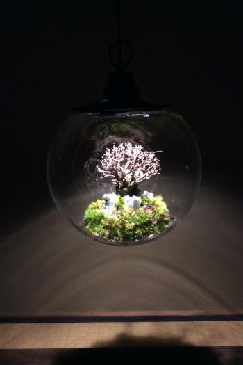Re:planter × 清水志郎  「去」