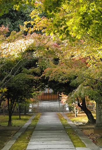 臨済宗興聖寺