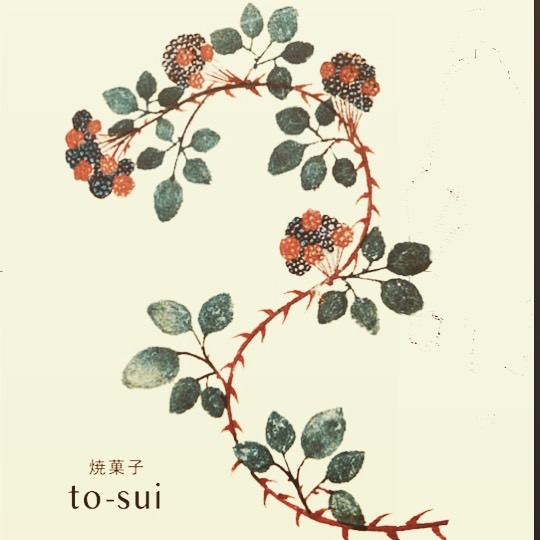 to-sui04